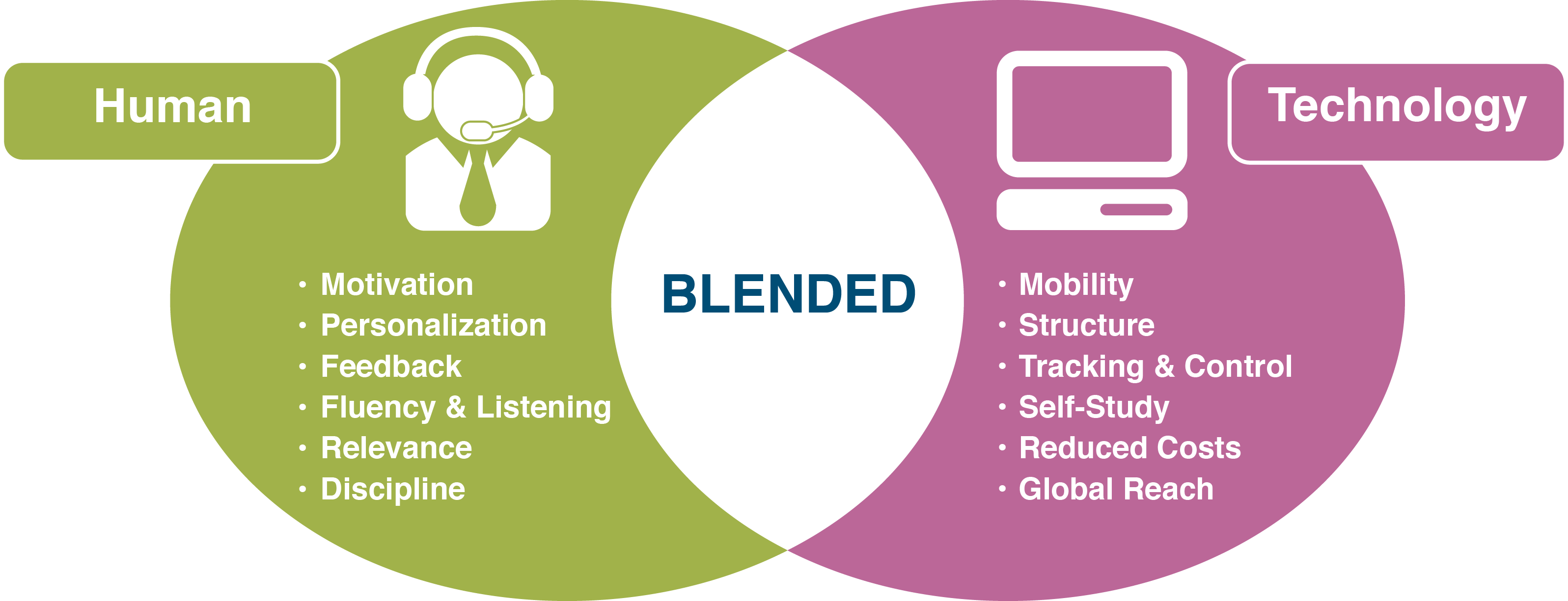 BlendedLearning_venn_diagram